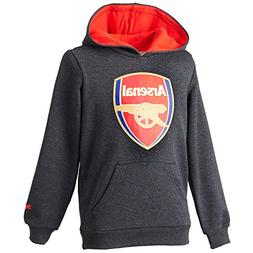 2015-2016 Arsenal Puma Fan Hoody  - Kids
