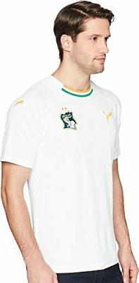 PUMA Men's Fif Ivory Coast Replica Jersey - Choose SZ/color